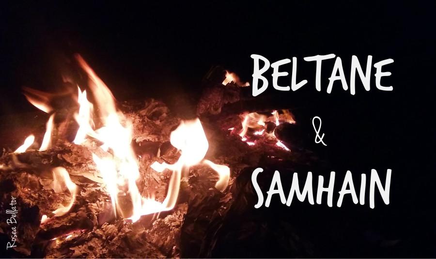 celebre beltane - celebre samhain - celebre o dia das bruxas - celebre ritual das bruxas - celebração - celebre noite das bruxas - celebre noite de magia - abertura dos véus - celebre festa dos mortos - celebre festa do sexo e amor